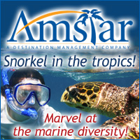 Amstar Snorel in the tropics